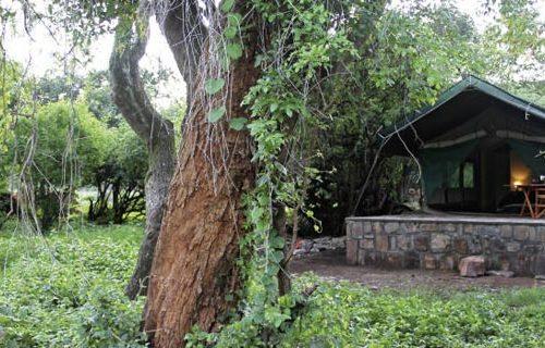Rwanda's Ruzizi Tented Lodge